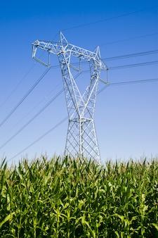 耕作地での高電圧パイロン