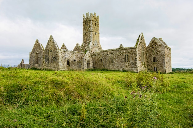 アイルランドの風景。ゴールウェイ郡のロスの修道院の遺跡