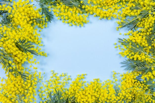 青の背景にミモザの花のフレーム。