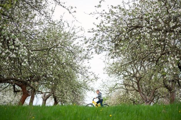 春の庭で黄色い自転車に乗って小さな男の子。子供、サイクリング、美しい自然、ライフスタイルのコンセプト