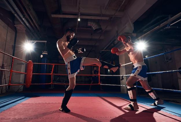 Тренировка боксеров по кикбоксингу на ринге в клубе здоровья