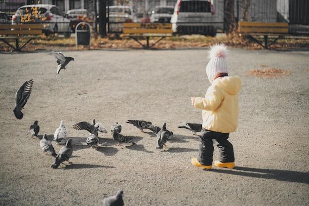 ハトを追いかける小さな子供。鳥に餌をやる少女。子供の頃、ストリートゲーム