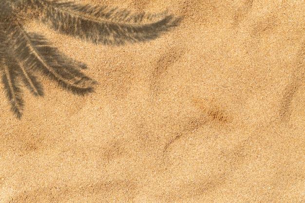 夏の背景、ヤシの影と砂