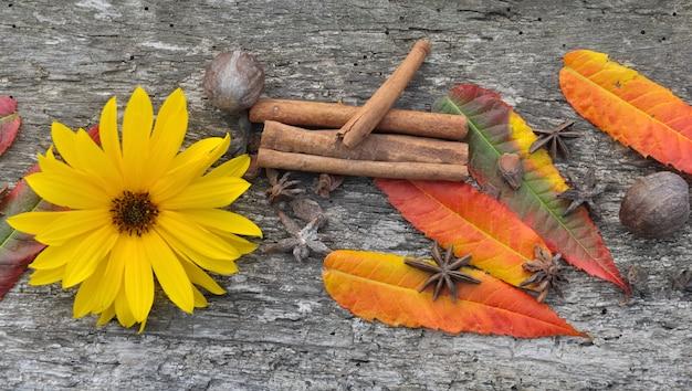 スパイス、葉、花