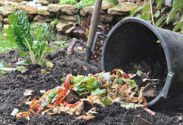 堆肥用の野菜の皮