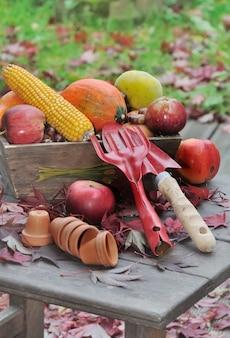 果物と野菜のツール