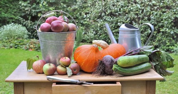 Сезонные овощи и яблоки