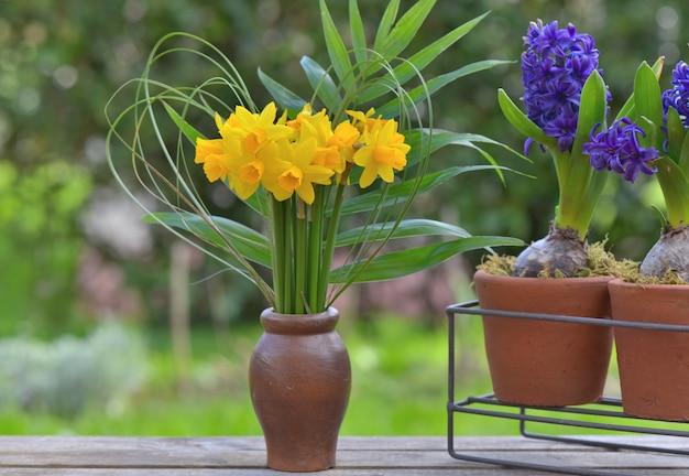 Букет из нарциссов и гиацинтов в горшке на столе в саду
