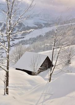 高山の雪の中で木造シャレー