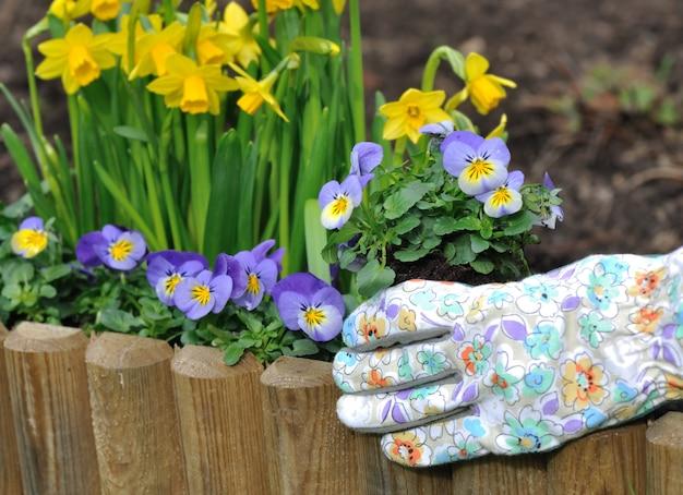 春に花を植える