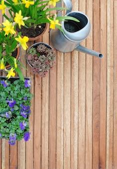Весенние цветы на деревянном фоне
