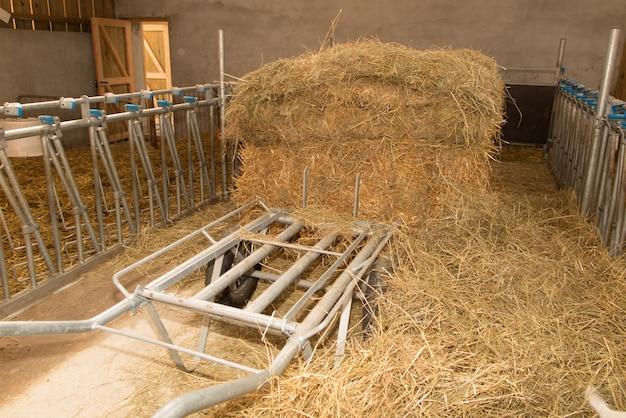 ヤギのいない空の農場の納屋-動物なし