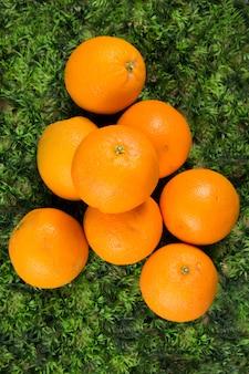 Свежие оранжевые фрукты на зеленой траве