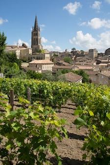 Виноградники в центре города сент-эмильон, франция
