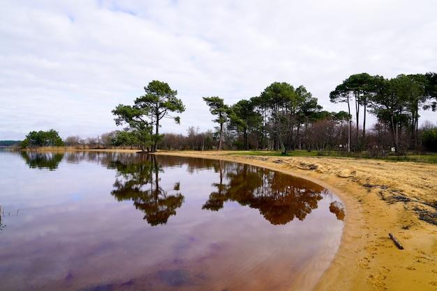 砂浜に沿って大きな松とサンギネット湖の砂