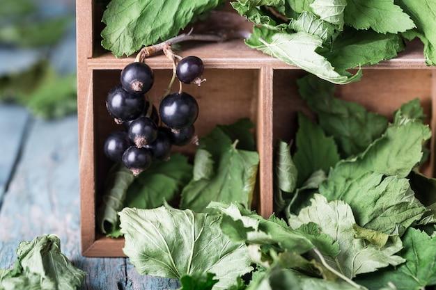 ブラックカラントの葉を箱に入れて乾燥させる