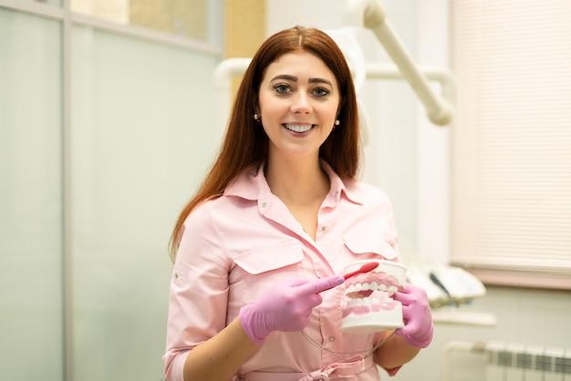 Стоматолог демонстрирует макет челюсти и зубной щетки. молодой женский дантист на ее рабочем месте, представление правильной чистки. больной зуб, кариес, пульпит.