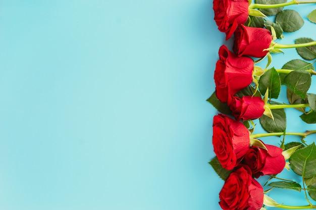 青の背景に赤いバラのトップビュー