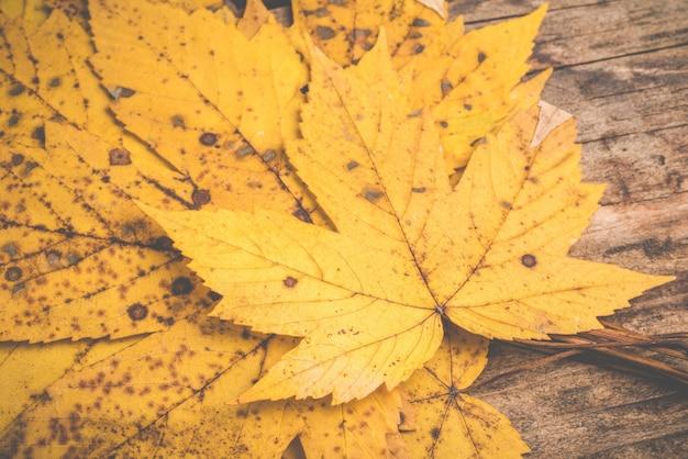 木製の背景に秋の葉