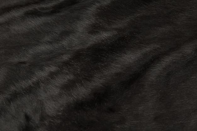 毛皮牛革の獣毛