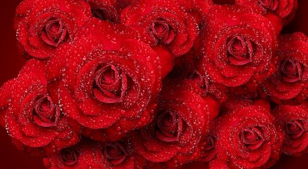Романтические красные розы с каплями воды