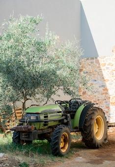 収穫後のレンガの壁とオリーブの木の庭の古いミニトラクター