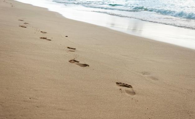 砂の上の足跡。海沿いのビーチでリラックスした散歩