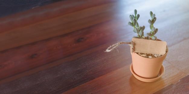 コピースペースを持つ表示製品バナーの木製テーブルデザインの空のバナーとサボテン