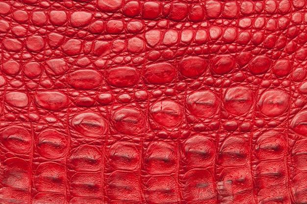 赤いワニ皮の背景。
