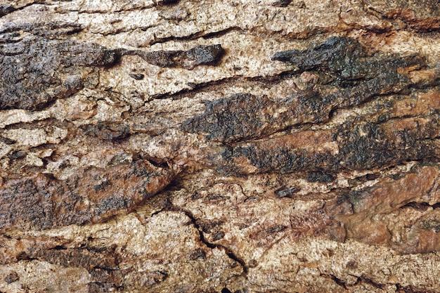亀裂のクローズアップの背景を持つ古い木目テクスチャ