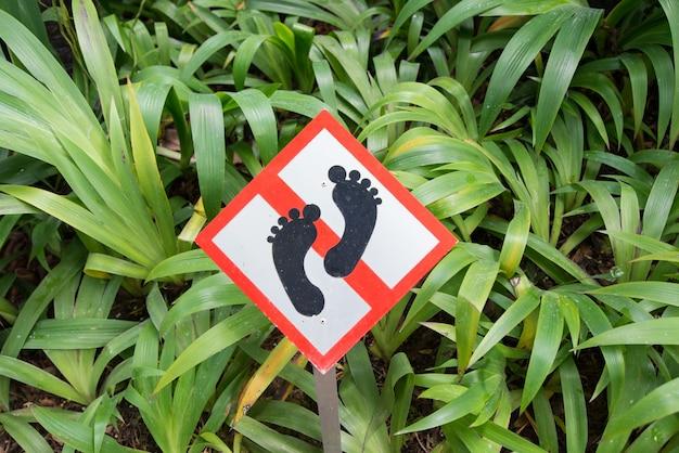 庭に足を踏み入れてはいけない