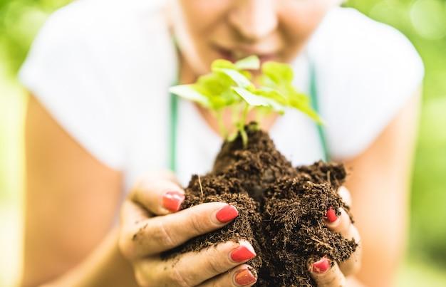 代替農場で小さなバジル植物の世話をする女性労働者