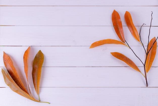 秋の枝、白い木製の背景に乾燥した葉。トップビュー、テキスト用のスペースをコピーします。秋のコンセプト。
