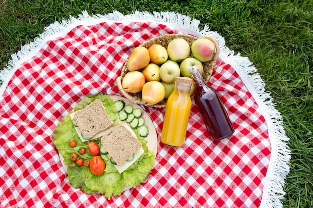 公園の芝生の上でピクニック。チーズ、きゅうり、トマトのサンドイッチ。