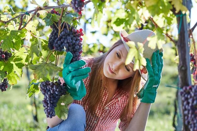 Женщина работает в винограднике