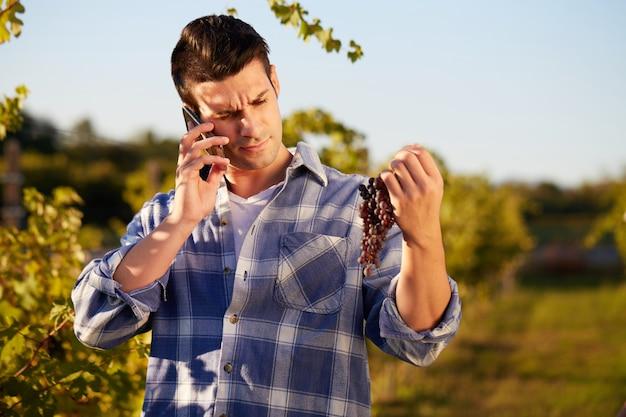 Человек, работающий в винограднике
