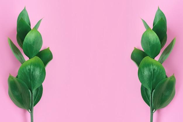 緑の熱帯はピンクに葉します。スタイリッシュでトレンディなミニマルな自然