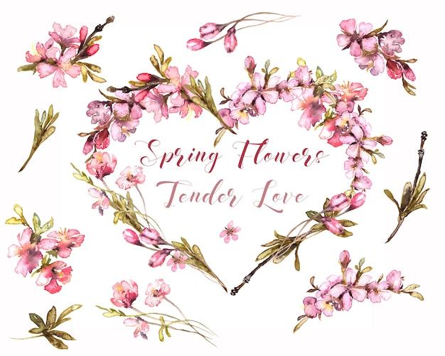 春の花の水彩画。テンダーブラッシュハート。透明な背景に花の心。ピンクの花輪