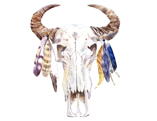 バッファローの頭蓋骨と羽の水彩画