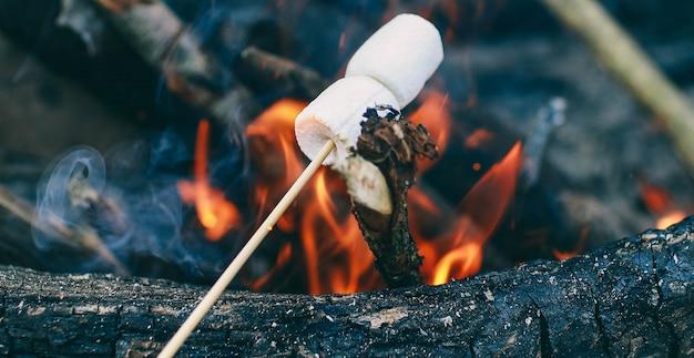 火の上の棒にマシュマロ火のマシュマロを調理