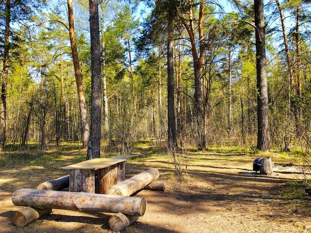 春の森の中の木のテーブル