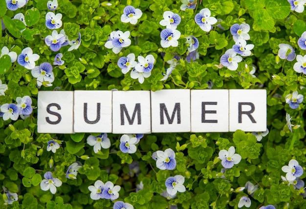 Деревянный алфавит лето на фоне зеленой травы