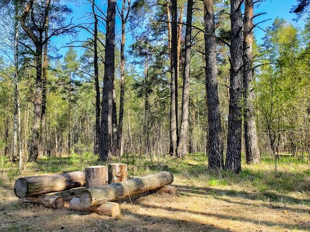 森の中の木のテーブル