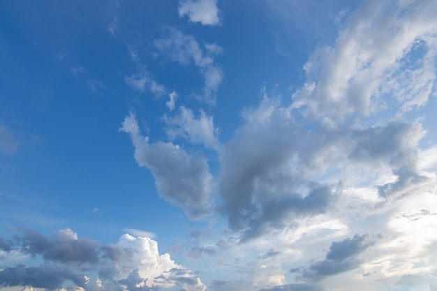 空の雲の低角度の眺め