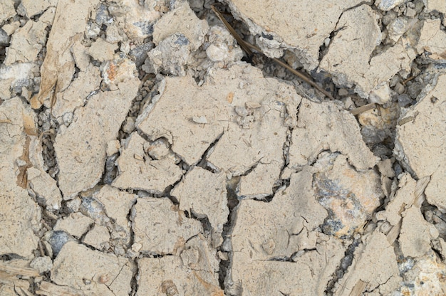 Концепция любви к миру, любви к окружающей среде земля засухи