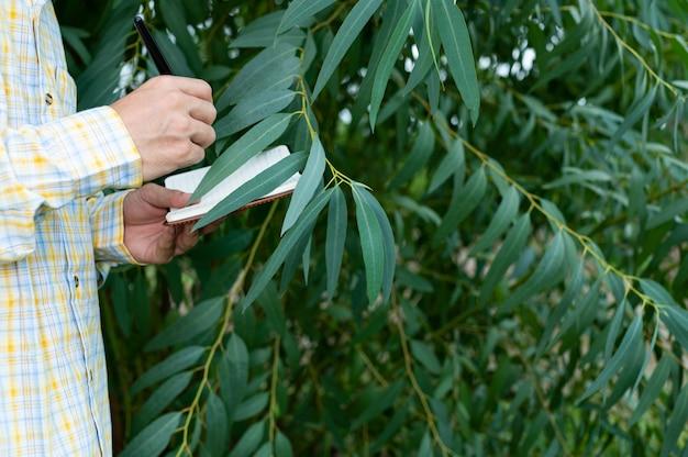 Фермер проверяет качество деревьев в саду
