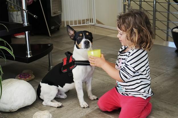 犬に飲み物を与える少女