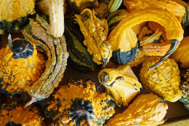 Много тыкв в овощной лавке