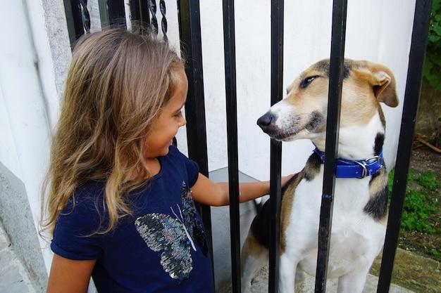 女の子は美しい犬と遊ぶ