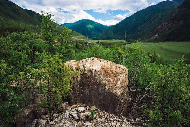 晴れた日に森林に覆われた素晴らしい巨大な山の大きな石。